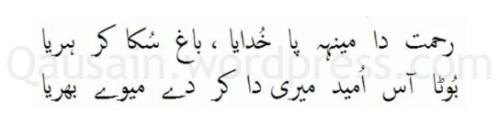 saif_ul_malook_02