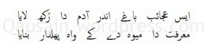 saif_ul_malook_03