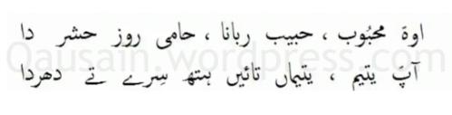 saif_ul_malook_07