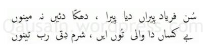 saif_ul_malook_10