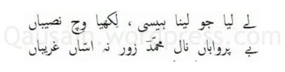 saif_ul_malook_15