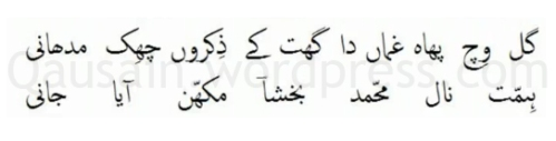 saif_ul_malook_22