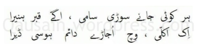 saif_ul_malook_29