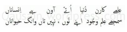 saif_ul_malook_30