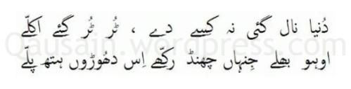 saif_ul_malook_36