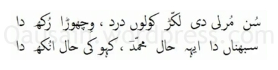 saif_ul_malook_40