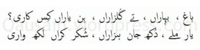 saif_ul_malook_46