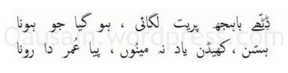 saif_ul_malook_48