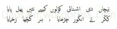 saif_ul_malook_50