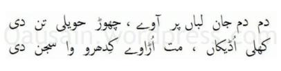 saif_ul_malook_52