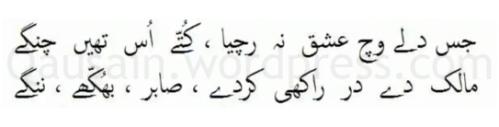 saif_ul_malook_56