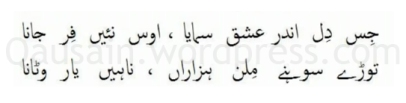 saif_ul_malook_58