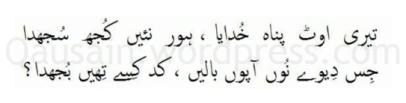 saif_ul_malook_59