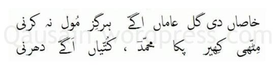 saif_ul_malook_61