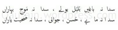 saif_ul_malook_62