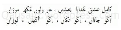 saif_ul_malook_70