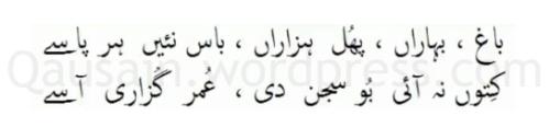 saif_ul_malook_71