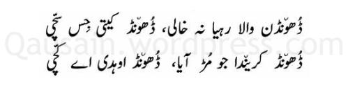 saif_ul_malook_154